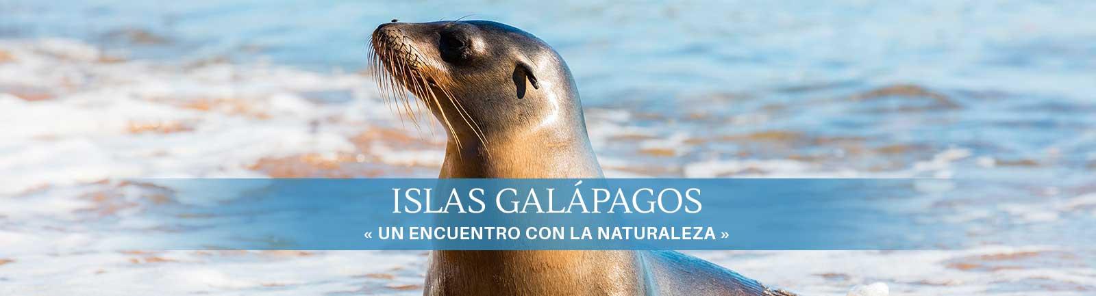 Destino Islas Galápagos
