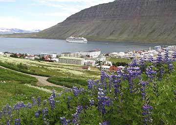 crucero por Isafjord (Islandia)