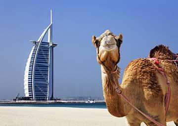 crucero por Dubai (EAU)