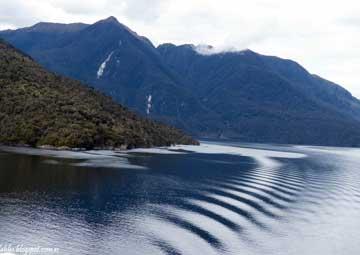 crucero por Fiordo Dusky Sound (Nueva Zelanda)