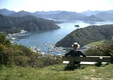 crucero por Picton (Nueva Zelanda)