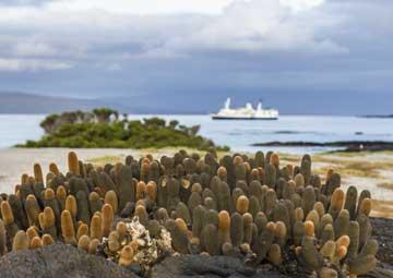 crucero por North Seymour (Galápagos)