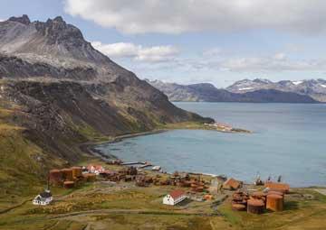 crucero por Grytviken