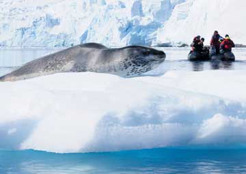 crucero por ANTARCTIC SOUND/PENINSULA