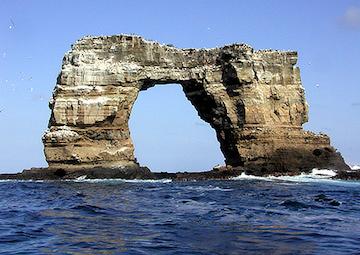crucero por Darwin Bay Genovesa