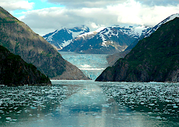 crucero por Cruies Sawyer Glacier (Alaska)