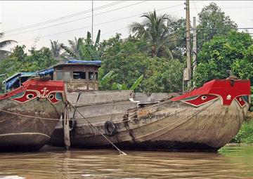 Puerto Cái Bè, Delta del Mekong